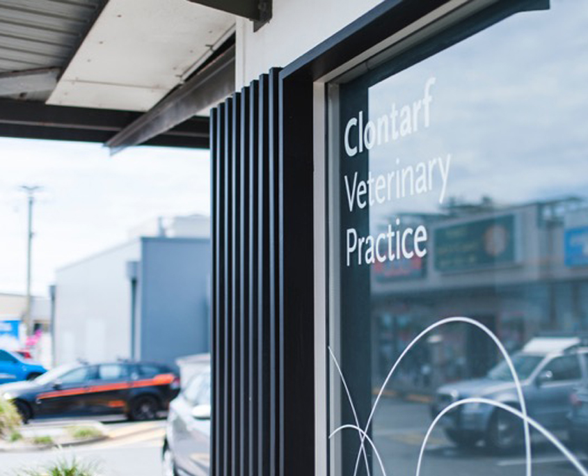 Clontarf - Vetwell independent vet practices
